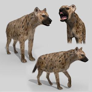 hyena value animation - 3D model