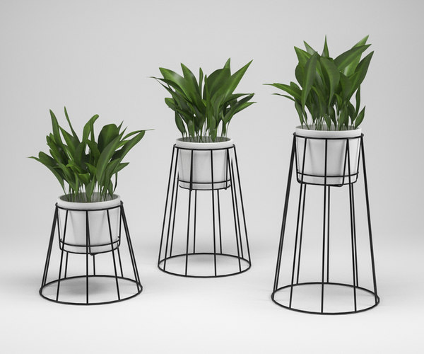 ok design cibele plant 3D