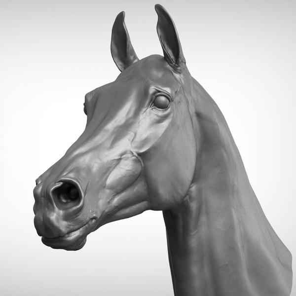 race horse head v2 3D model