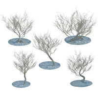 3d model random desert dry trees bushes