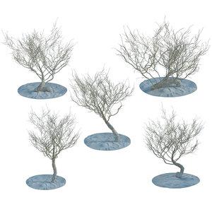 3d model random desert dry trees bushes
