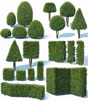 Taxus Baccata topiary Mega Collection 32 models