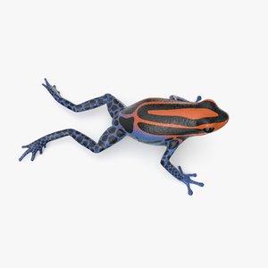 3D amazonian poison dart frog