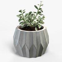 plant geometric pot 3D model