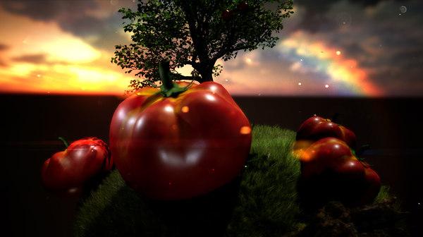 fruit tomato tomate 3D