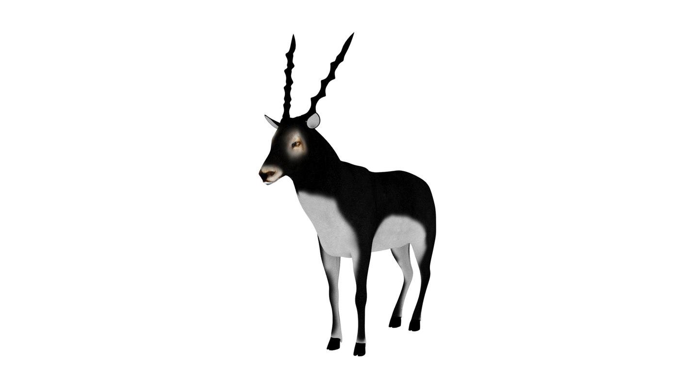 rigged blackbuck animations 3D model
