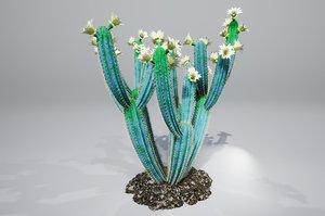 cactus pbr model