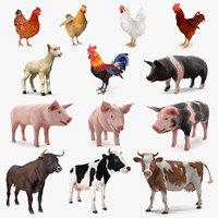 Farm Animals Big Collection