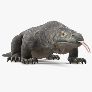 komodo dragon rigged 3D model
