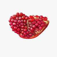 Realistic Piece of Pomegranate 02