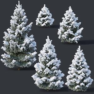 3D fir trees model