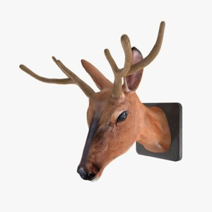 3D model deer stuffed head
