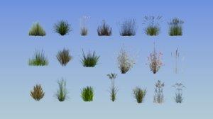 grass plant 20 3D model