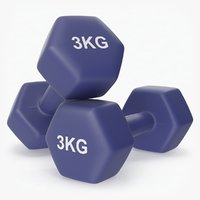 plastic fitness dumbbells 3kg 3D model