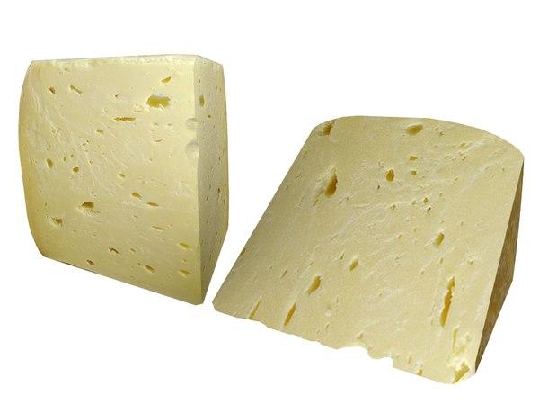 cheese model