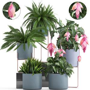 3D plants exotic