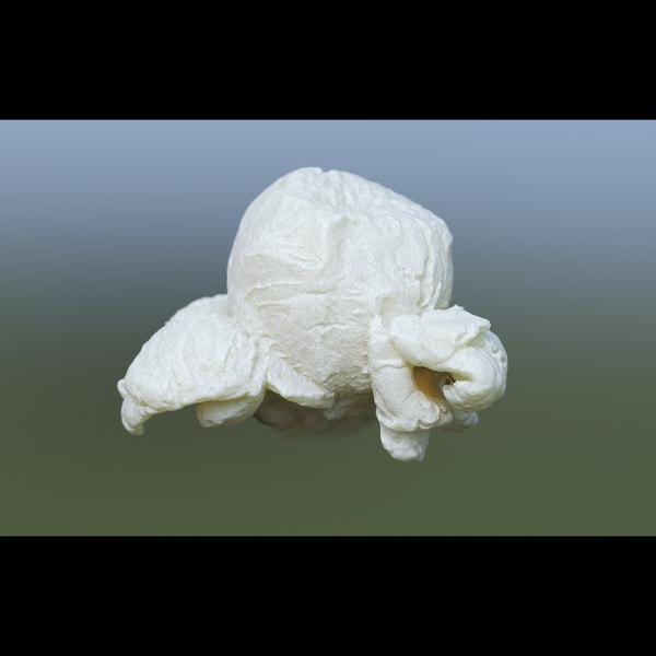 3D popcorn model