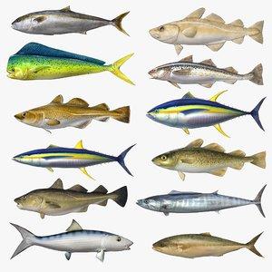 fish 3D model