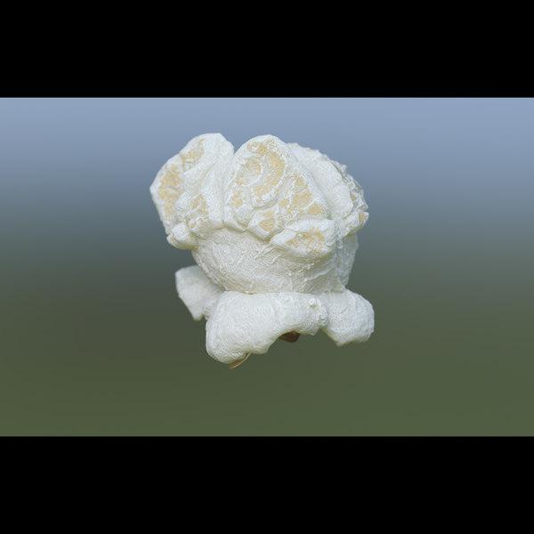 3D popcorn food snack model