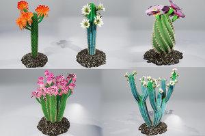 3D cactus pbr
