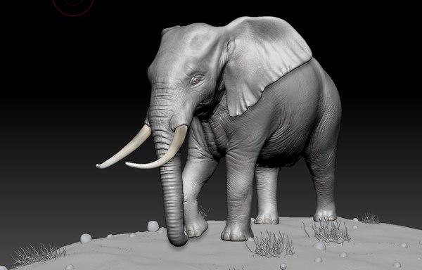 3D z brush