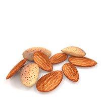 3D model almond nut