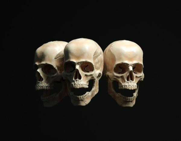 skkul head 3D