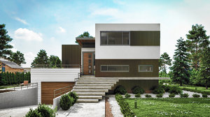 3D peters house villa model