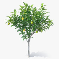 3D small lemon tree