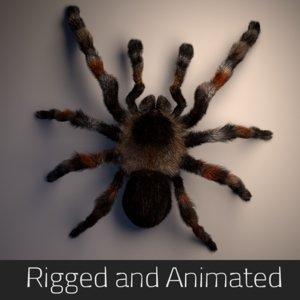 3D tarantula rigged