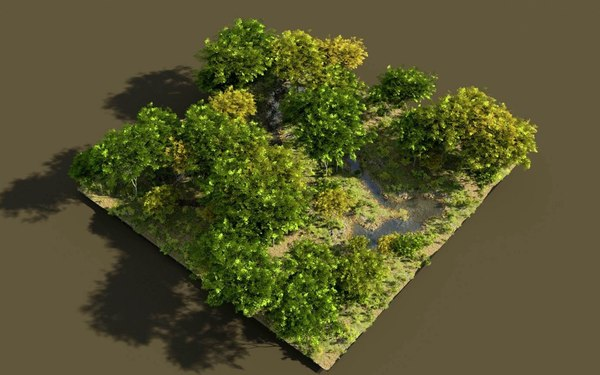 shadows brook tree 3D model