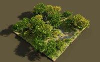 shadows brook tree 3D model