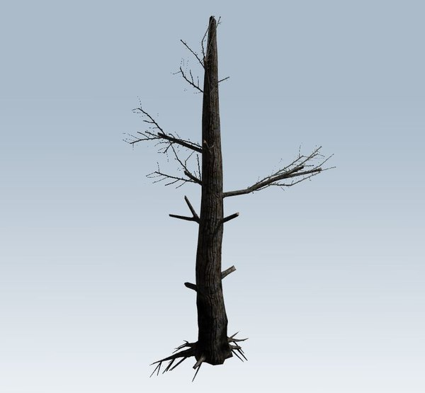 3D tree charred trunk