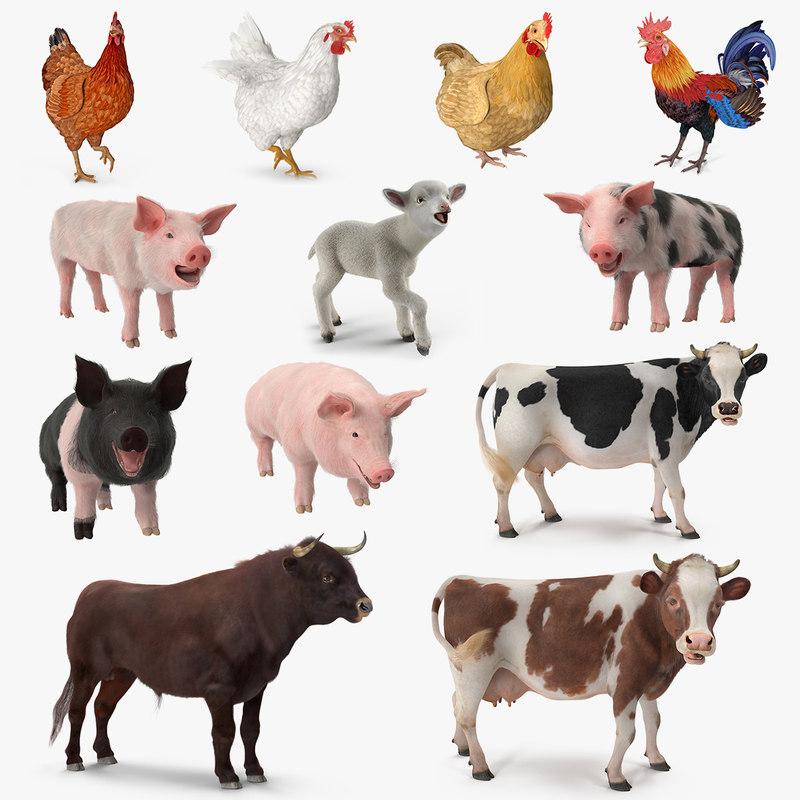 Farm Animals Big Rigged 3D Model