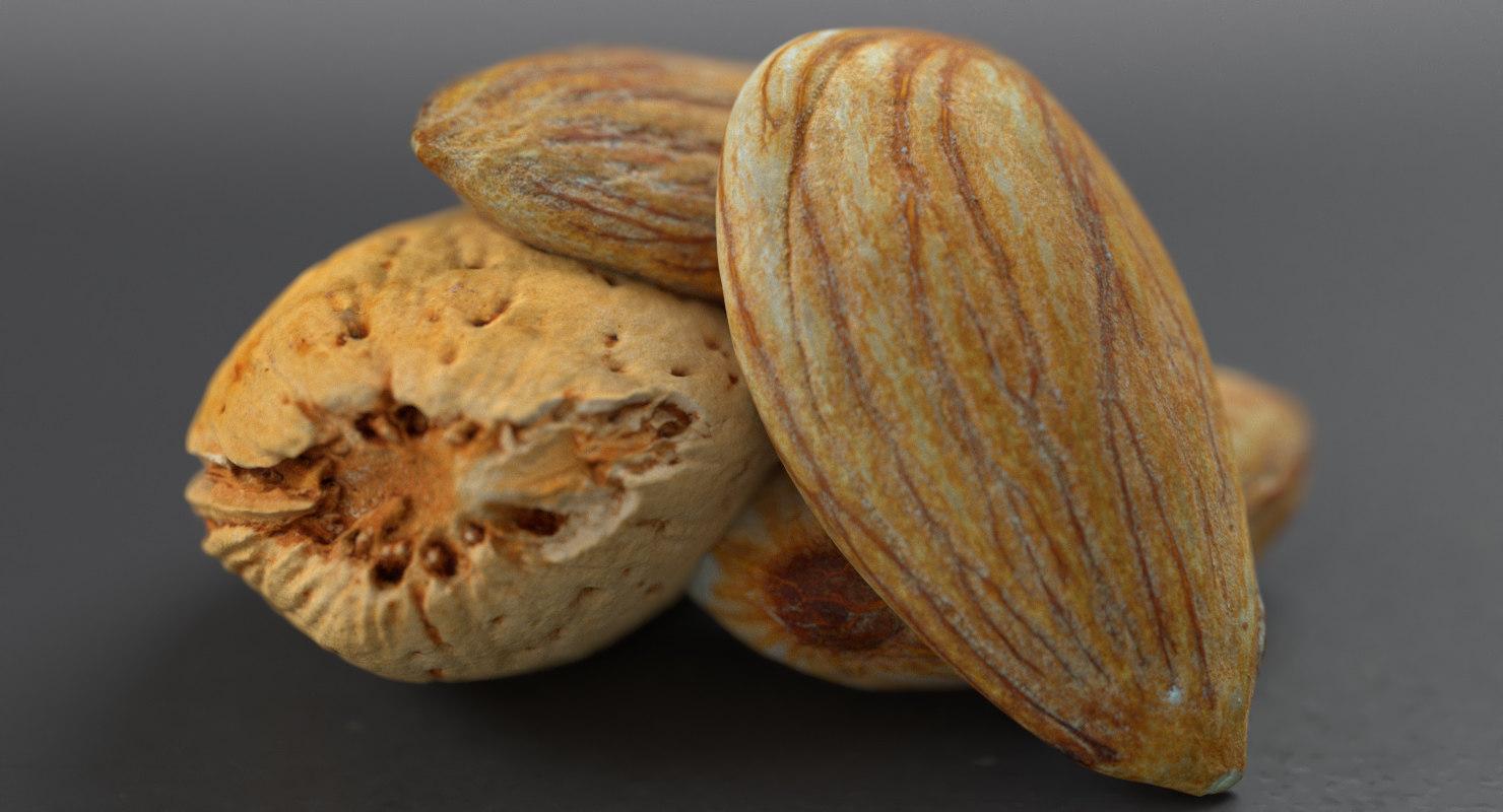 almond nuts 3D model