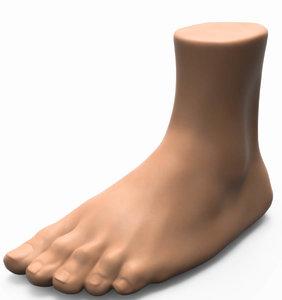 3D model foot