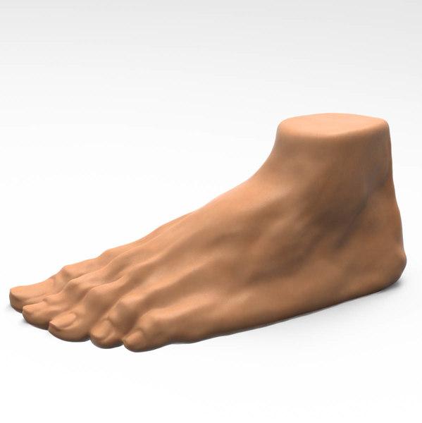foot model
