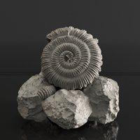 sea fossil 3D model