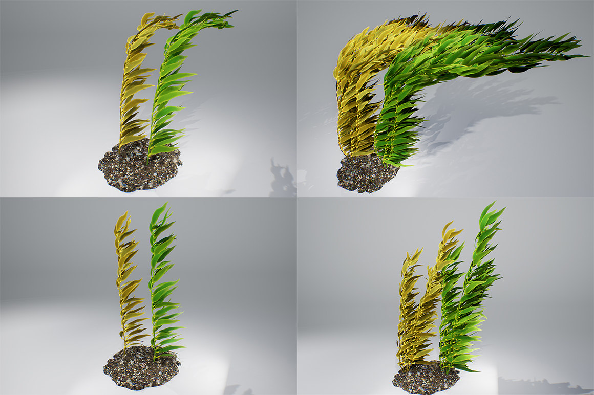 kelp brown pbr 3D