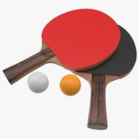 3D ping pong paddle model