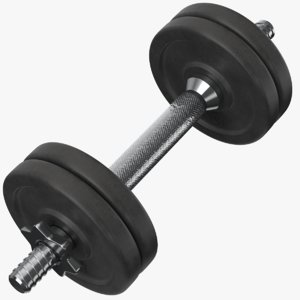 3D model dumb bells dumbbells