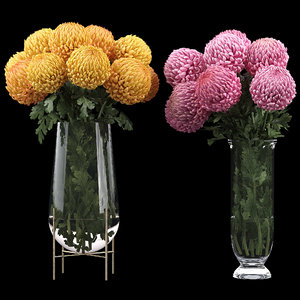 chrysanthemum flowers bouquet 3D model
