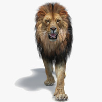Lion 2 Animated (Polygonal Mane)