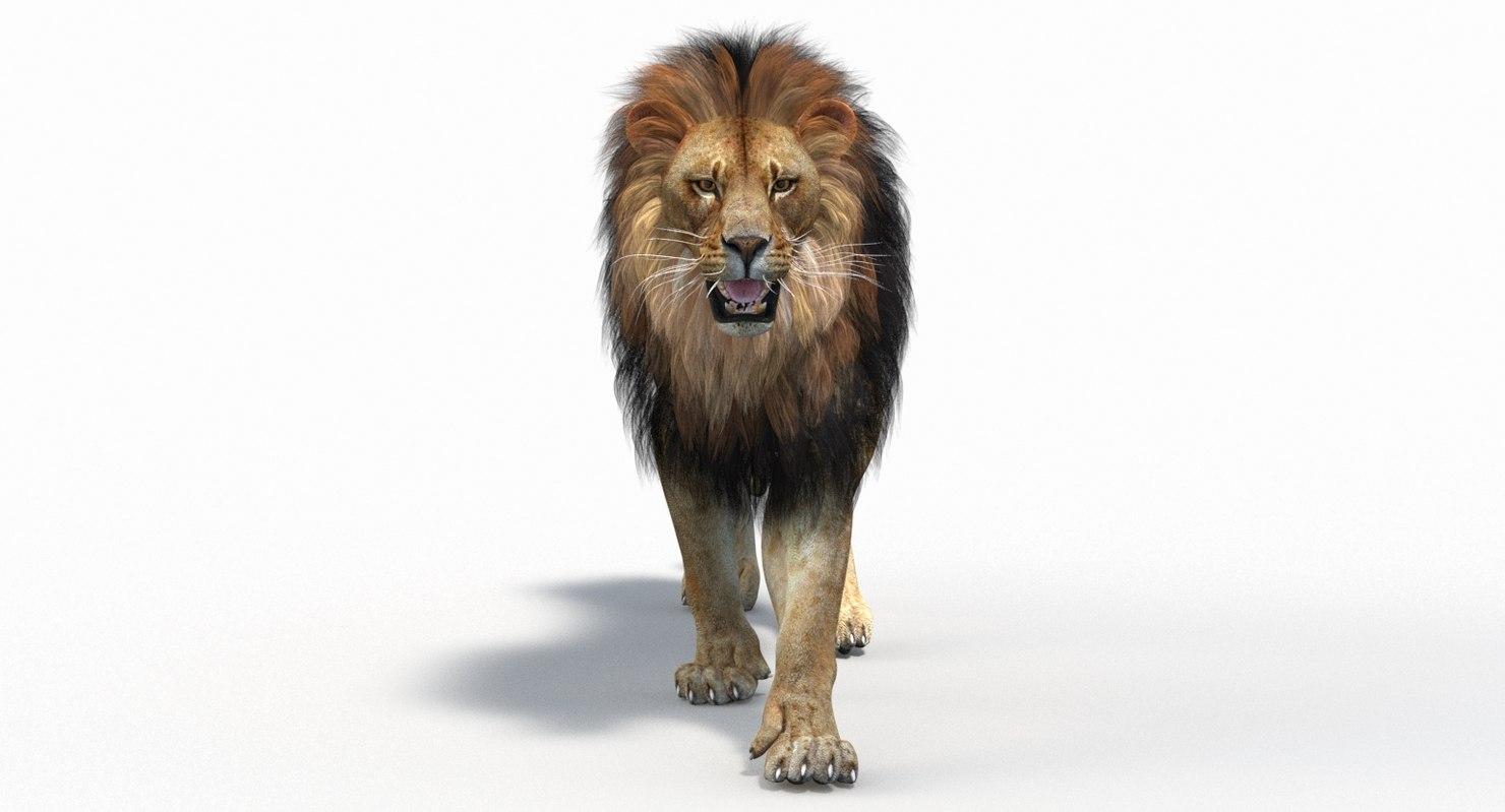 3D model lion 2 polygonal mane