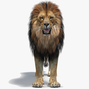 3D lion 2 polygonal mane
