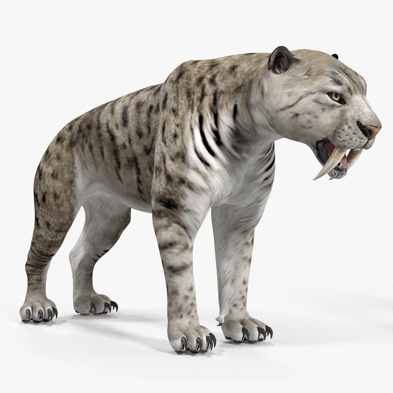 3D arctic saber tooth cat