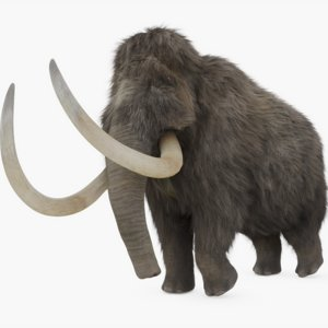 rigged woolly mammoth 3D model