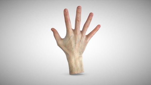 scan hand 3D model