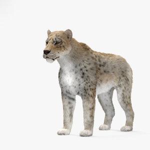 3D mammal animal