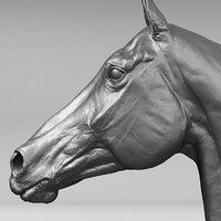 3D horse head realistic